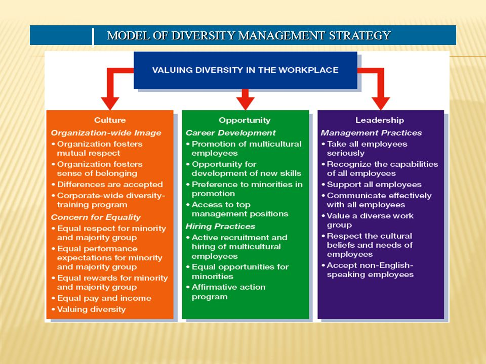 MODEL OF DIVERSITY MANAGEMENT STRATEGY