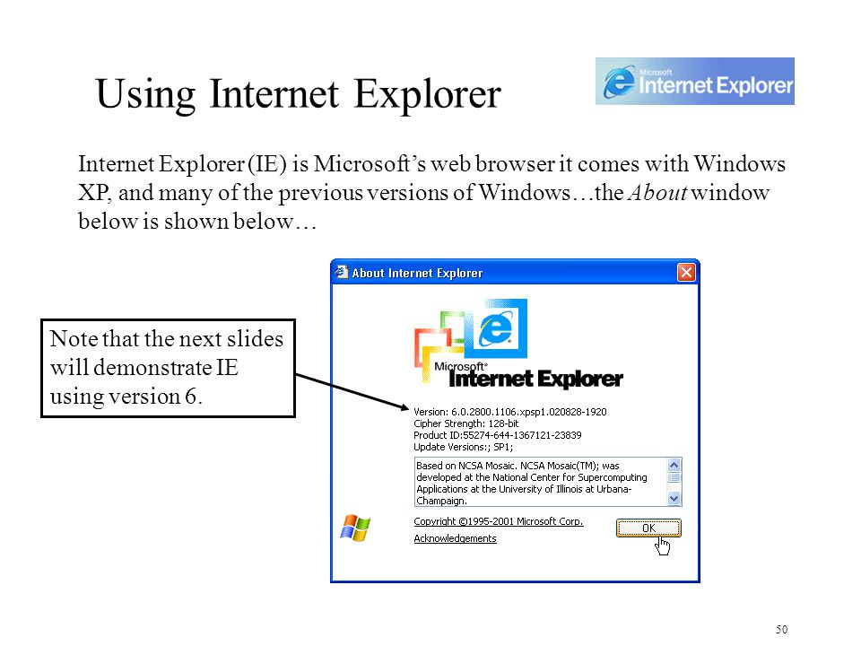50 Using Internet Explorer Internet Explorer (IE) is Microsoft's web browser it comes with Windows XP, and many of the previous versions of Windows…the About window below is shown below… Note that the next slides will demonstrate IE using version 6.