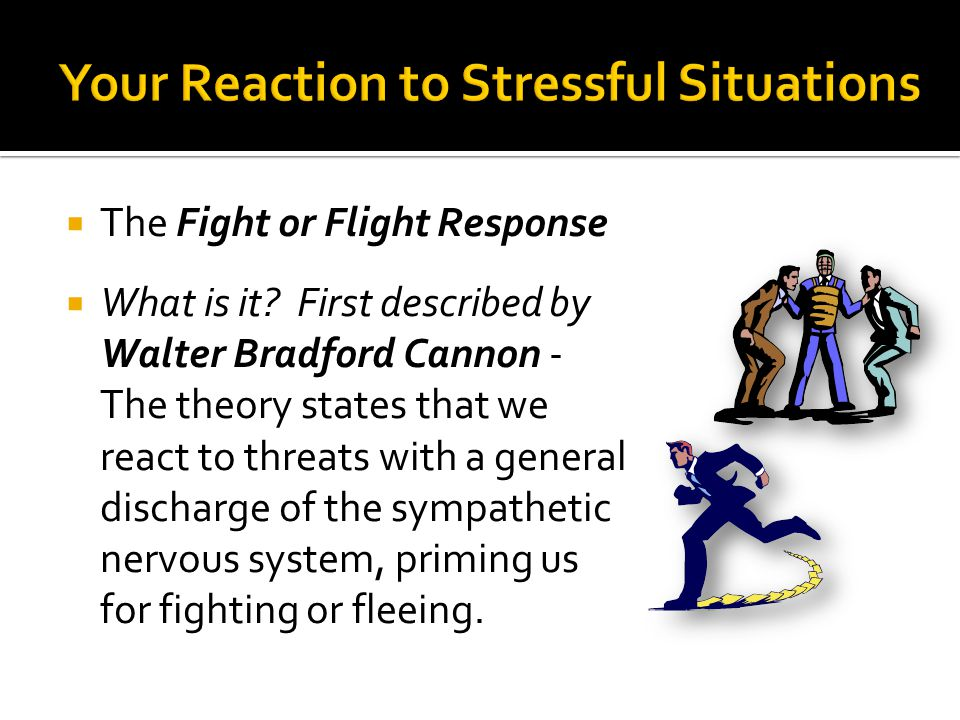 The Fight or Flight Response  What is it? First described by Walter Bradford Cannon - The theory states that we react to threats with a general dis