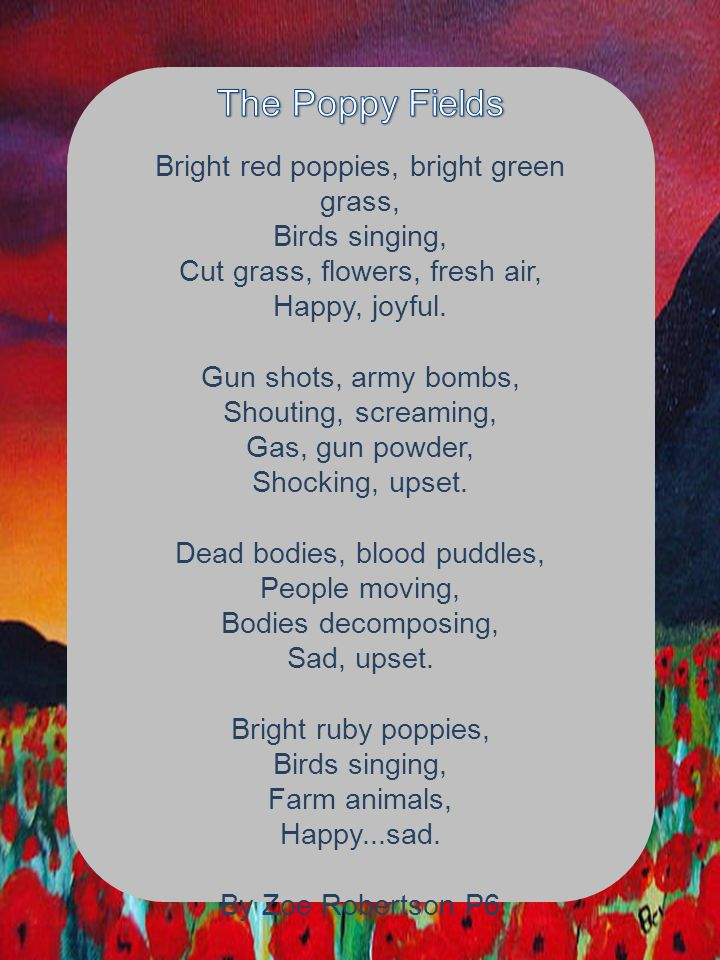 Bright red poppies, bright green grass, Birds singing, Cut grass, flowers, fresh air, Happy, joyful. Gun shots, army bombs, Shouting, screaming, Gas,