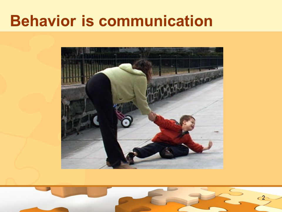 Behavior is communication 2