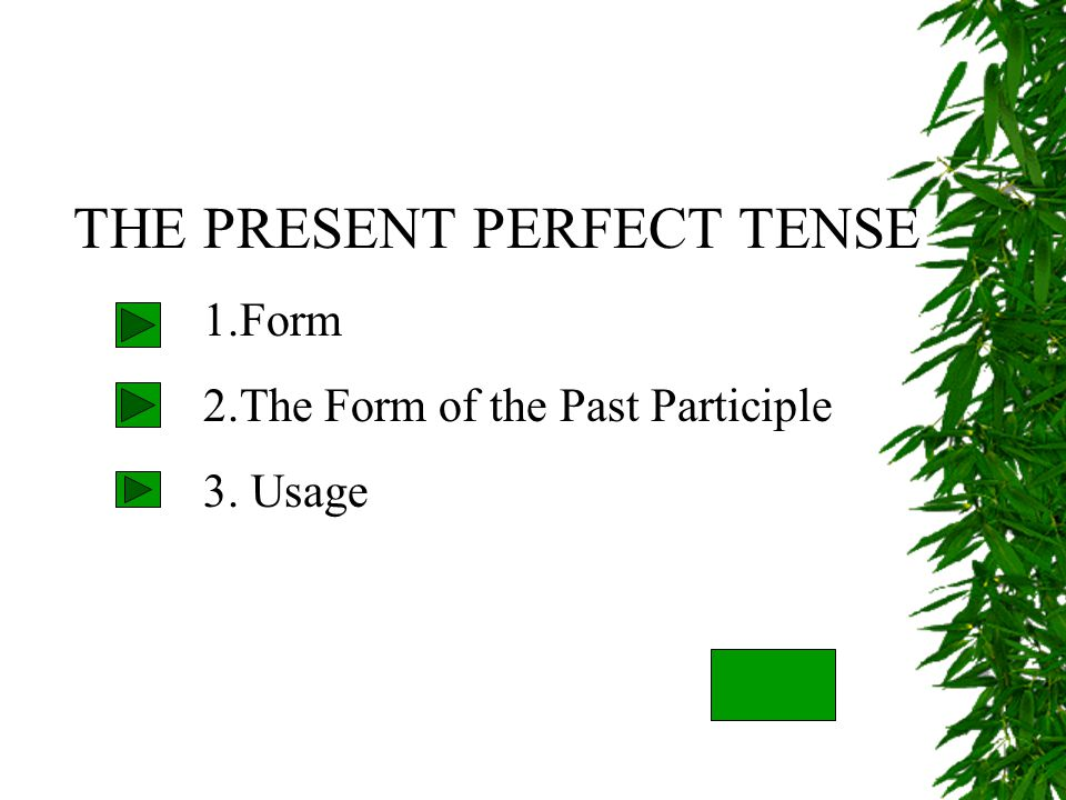 THE PRESENT PERFECT TENSE 1.Form 2.The Form of the Past Participle 3. Usage
