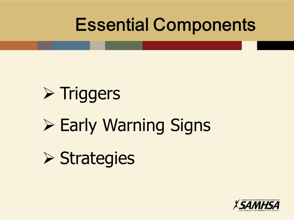 Essential Components  Triggers  Early Warning Signs  Strategies