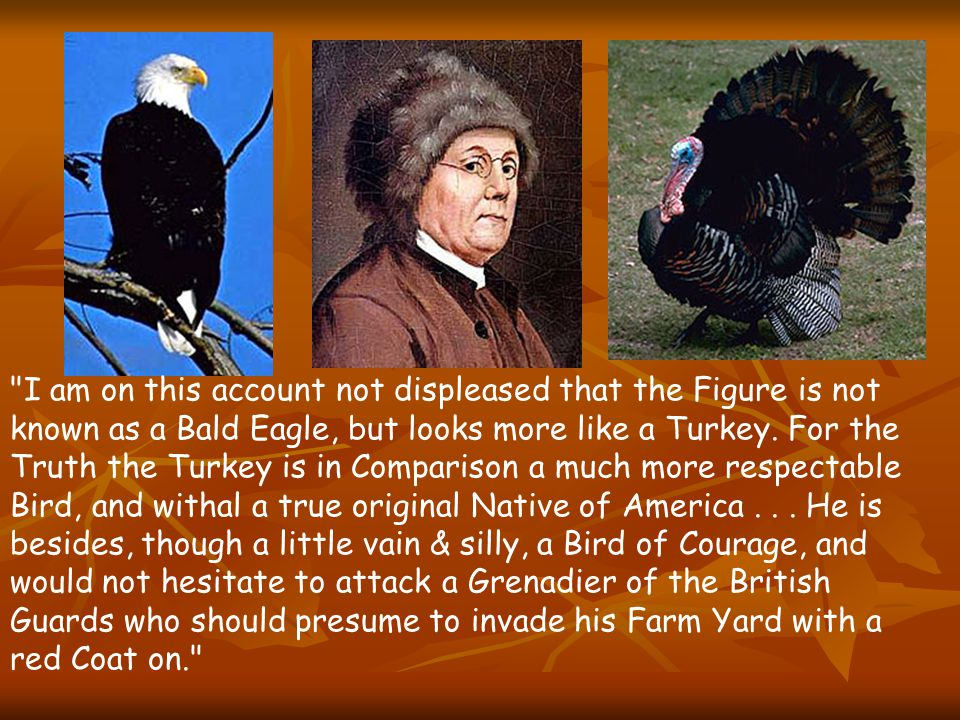 I am on this account not displeased that the Figure is not known as a Bald Eagle, but looks more like a Turkey.