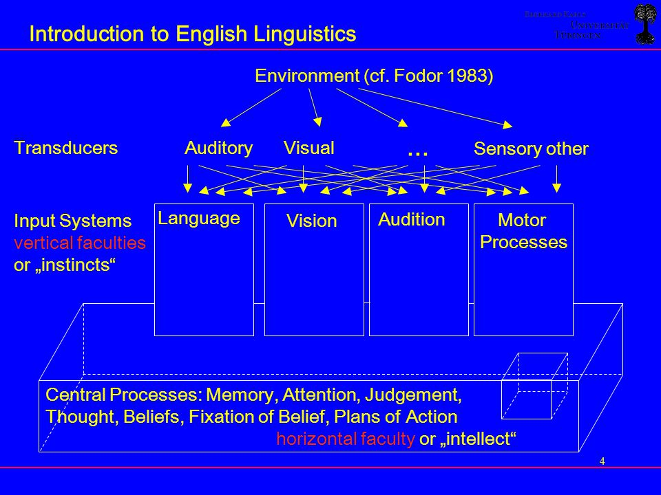 15 Introduction to English Linguistics They have an idea.