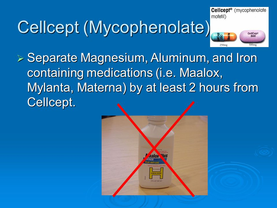 Cellcept (Mycophenolate)  Separate Magnesium, Aluminum, and Iron containing medications (i.e. Maalox, Mylanta, Materna) by at least 2 hours from Cell