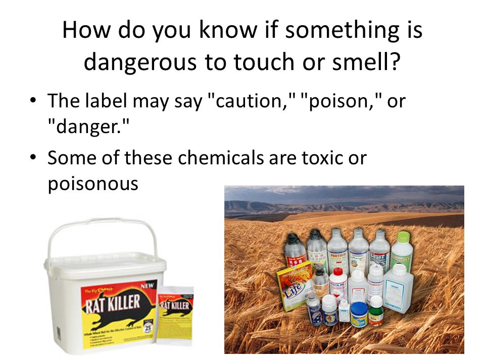 How do you know if something is dangerous to touch or smell.