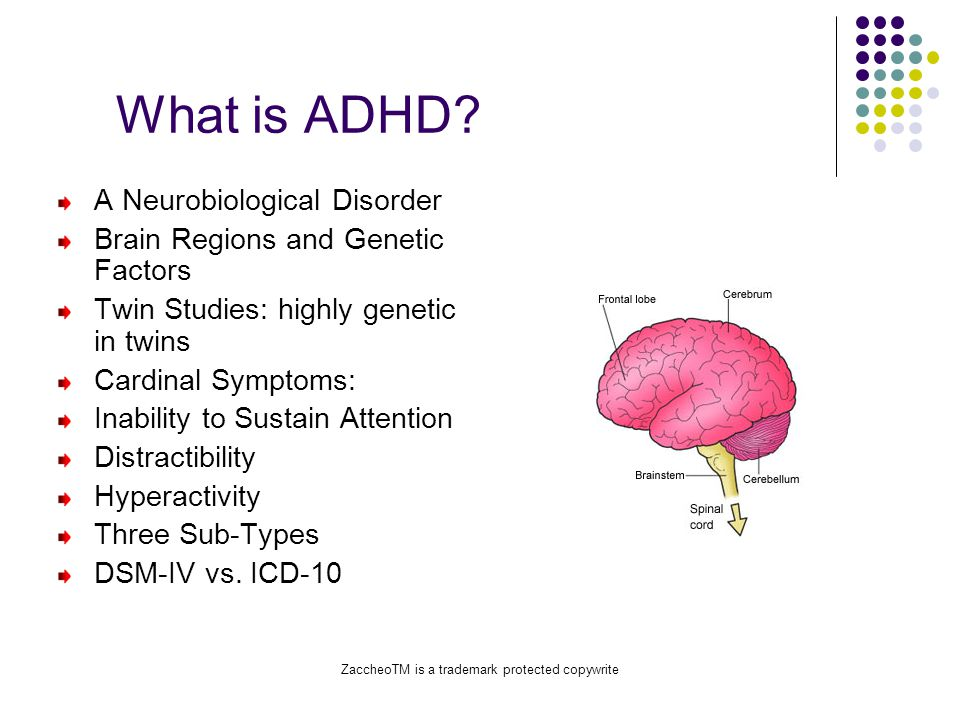 ZaccheoTM is a trademark protected copywrite What is ADHD.
