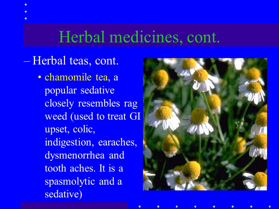 Herbal medicines, cont. –Herbal teas, cont. chamomile tea, a popular sedative closely resembles rag weed (used to treat GI upset, colic, indigestion,
