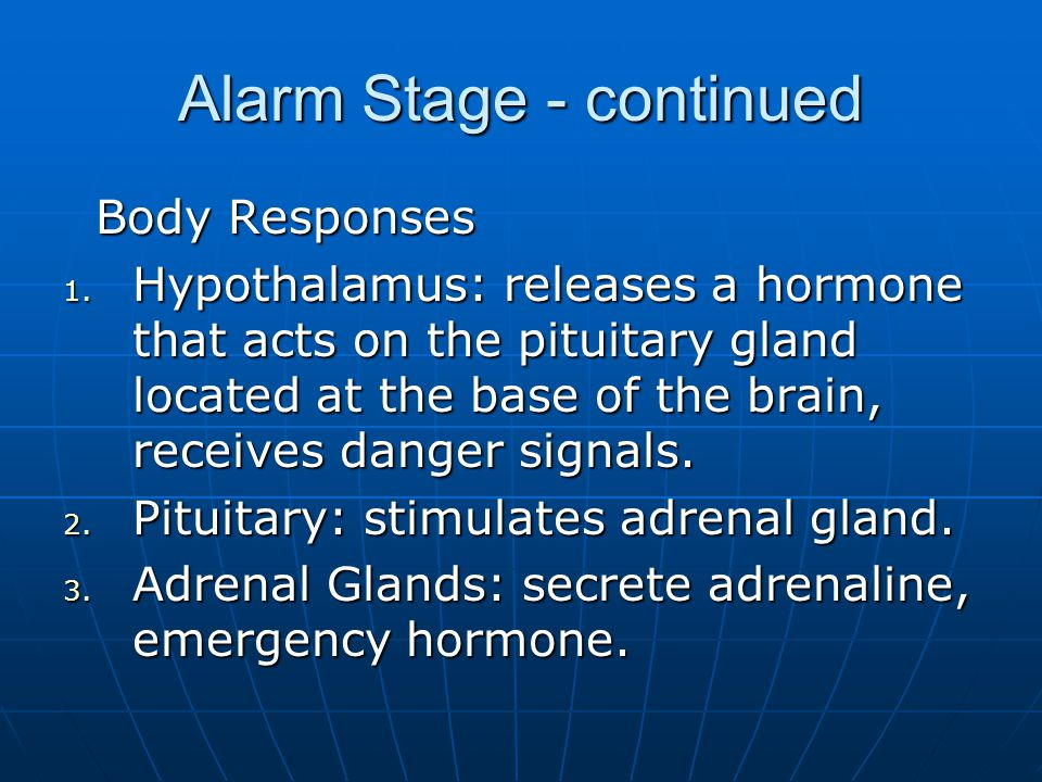 Alarm Stage - continued Body Responses Body Responses 1.