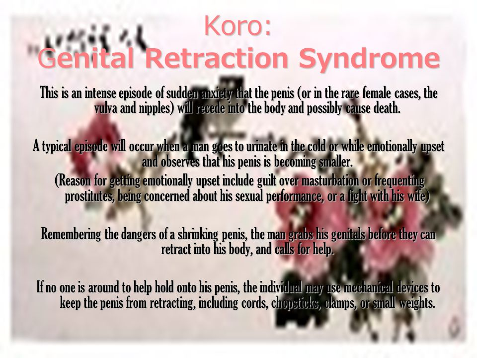 Koro: Genital Retraction Syndrome This is an intense episode of sudden anxiety that the penis (or in the rare female cases, the vulva and nipples) will recede into the body and possibly cause death.