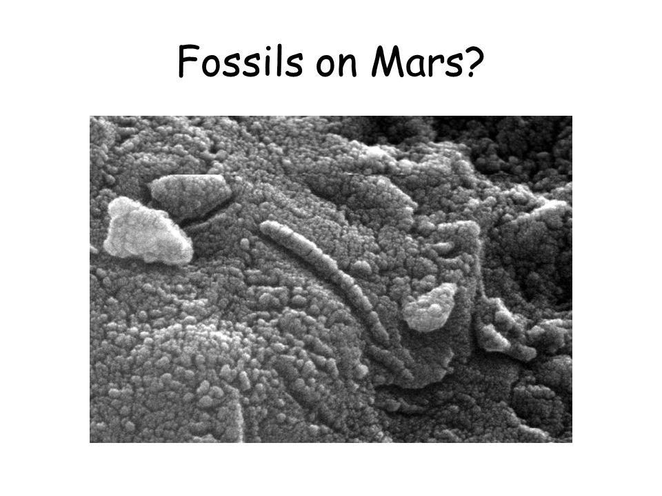 Fossils on Mars