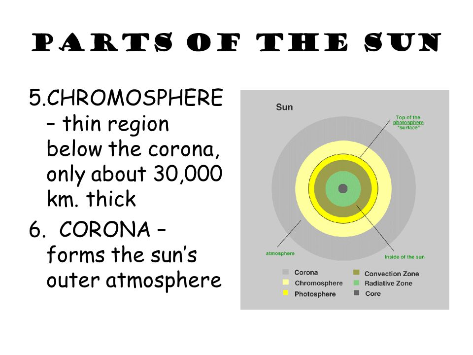 PARTS OF THE SUN 5.CHROMOSPHERE – thin region below the corona, only about 30,000 km. thick 6. CORONA – forms the sun's outer atmosphere