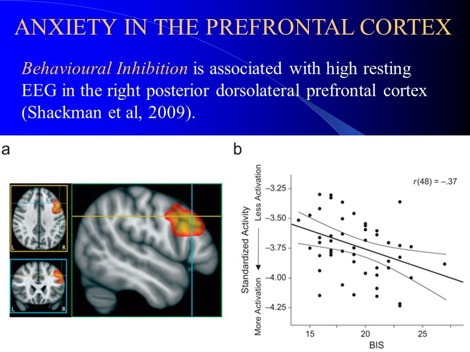Behavioural Inhibition is associated with high resting EEG in the right posterior dorsolateral prefrontal cortex (Shackman et al, 2009).