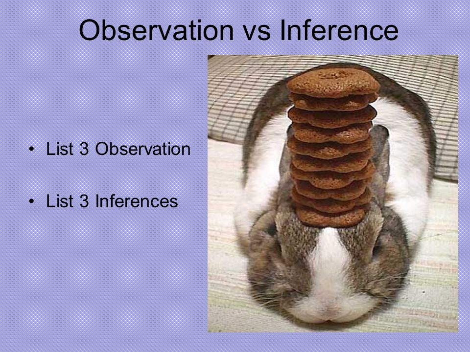Observation vs Inference List 3 Observation List 3 Inferences