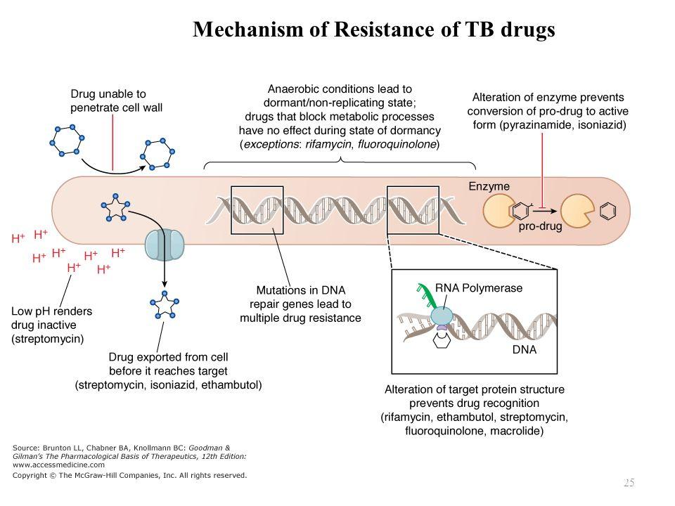 25 Mechanism of Resistance of TB drugs