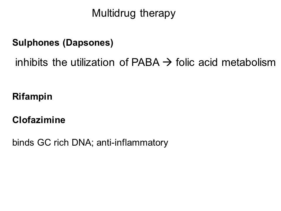 Multidrug therapy Clofazimine binds GC rich DNA; anti-inflammatory inhibits the utilization of PABA  folic acid metabolism Sulphones (Dapsones) Rifam