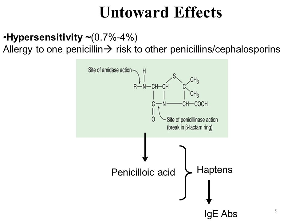 9 Untoward Effects Hypersensitivity ~(0.7%-4%) Allergy to one penicillin  risk to other penicillins/cephalosporins Penicilloic acid Haptens IgE Abs
