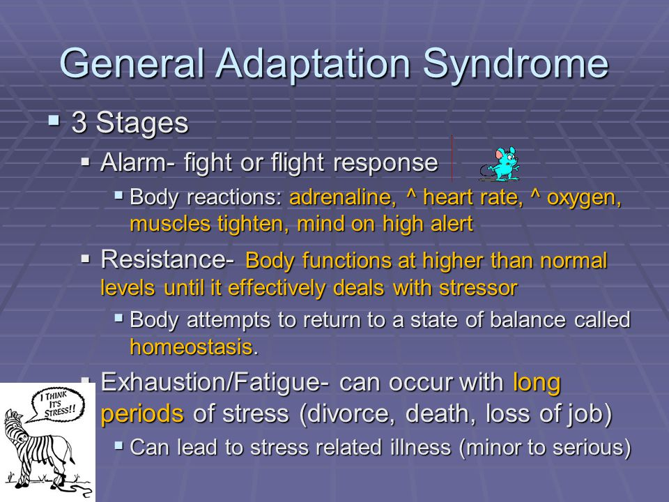 General Adaptation Syndrome  3 Stages  Alarm- fight or flight response  Body reactions: adrenaline, ^ heart rate, ^ oxygen, muscles tighten, mind on high alert  Resistance- Body functions at higher than normal levels until it effectively deals with stressor  Body attempts to return to a state of balance called homeostasis.