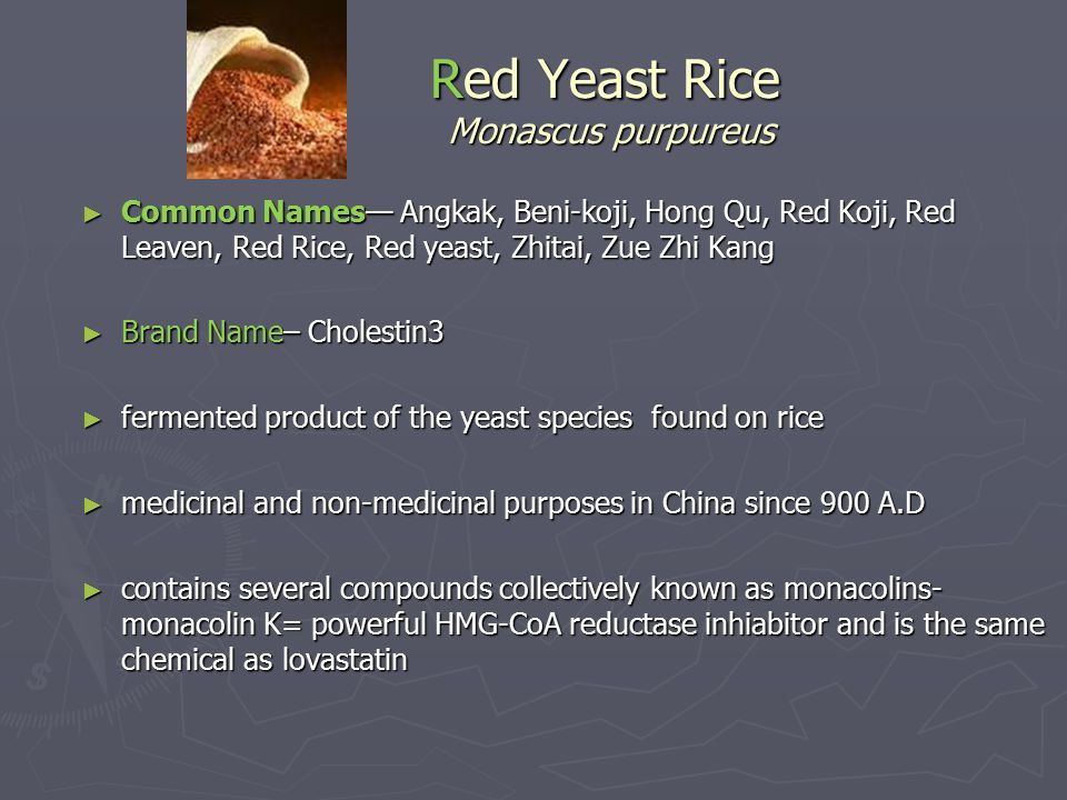 Red Yeast Rice Monascus purpureus ► Common Names— Angkak, Beni-koji, Hong Qu, Red Koji, Red Leaven, Red Rice, Red yeast, Zhitai, Zue Zhi Kang ► Brand Name– Cholestin3 ► fermented product of the yeast species found on rice ► medicinal and non-medicinal purposes in China since 900 A.D ► contains several compounds collectively known as monacolins- monacolin K= powerful HMG-CoA reductase inhiabitor and is the same chemical as lovastatin