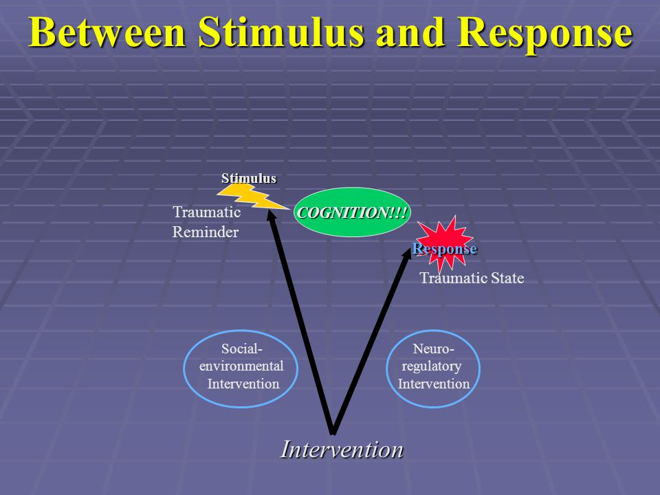 Between Stimulus and Response Response Stimulus Traumatic Reminder Traumatic State Intervention Social- environmental Intervention Neuro- regulatory I
