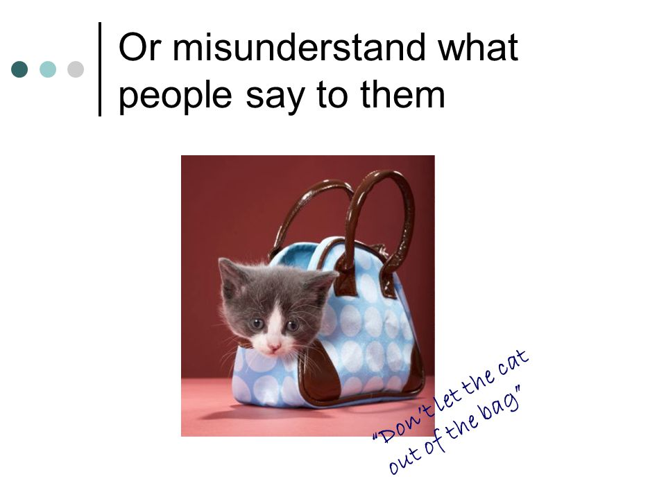 "Or misunderstand what people say to them ""Don't let the cat out of the bag"""