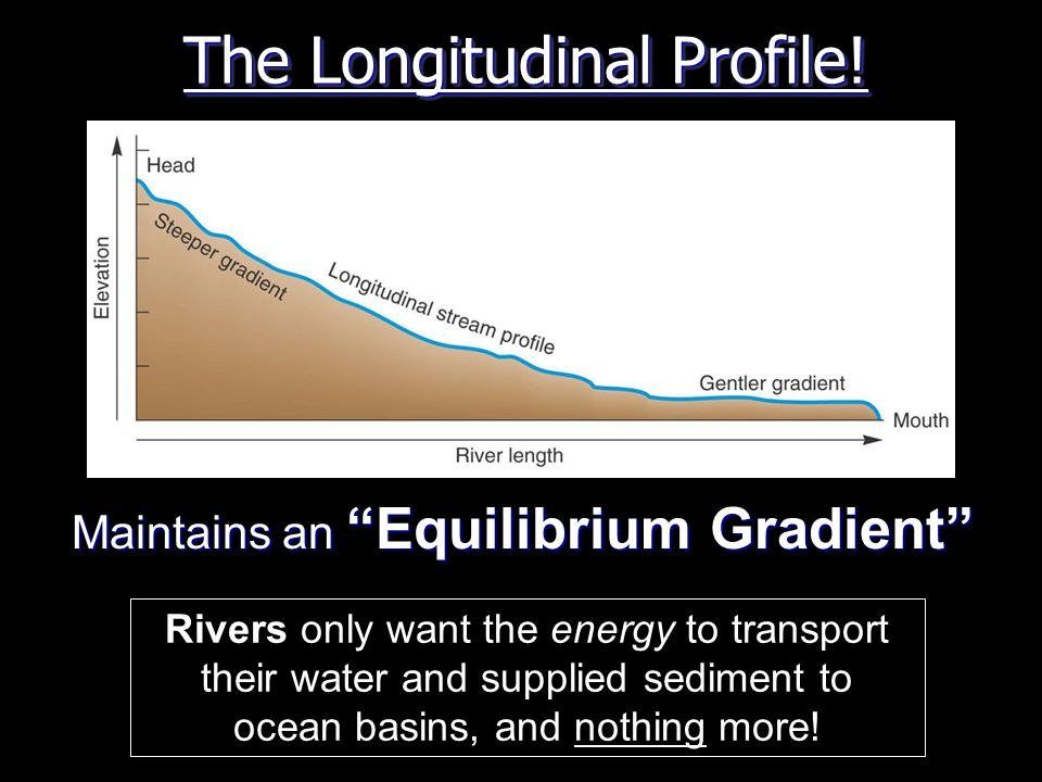 The Longitudinal Profile.