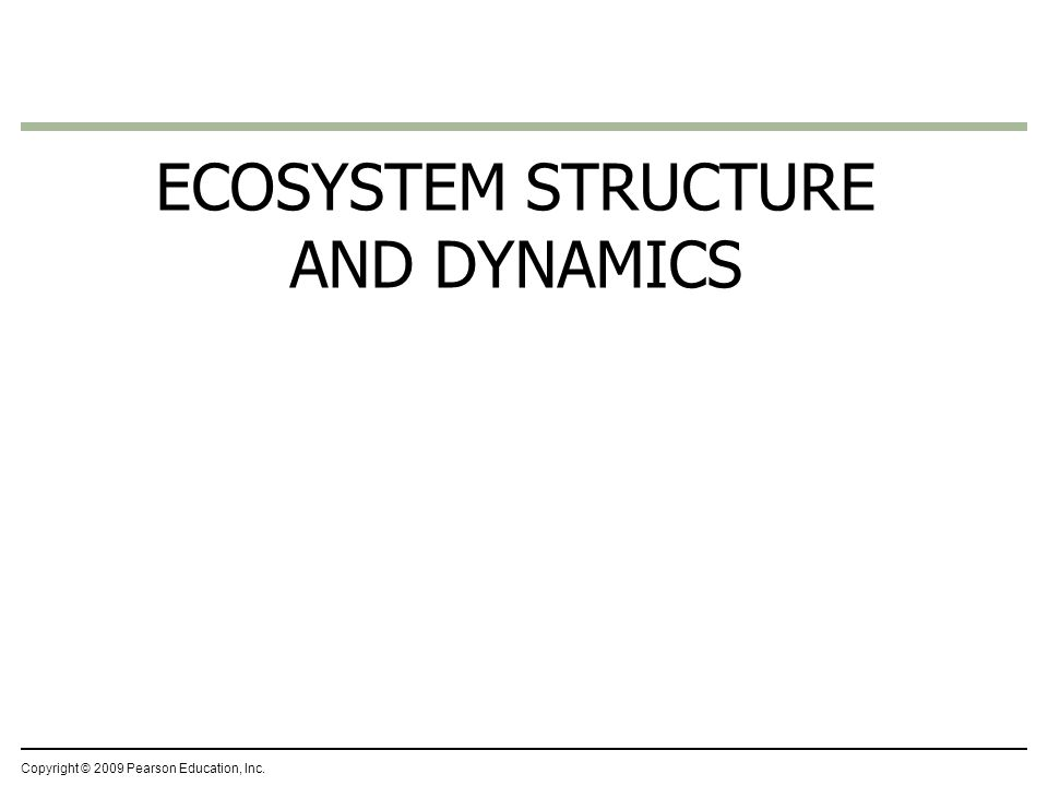 Copyright © 2009 Pearson Education, Inc. ECOSYSTEM STRUCTURE AND DYNAMICS
