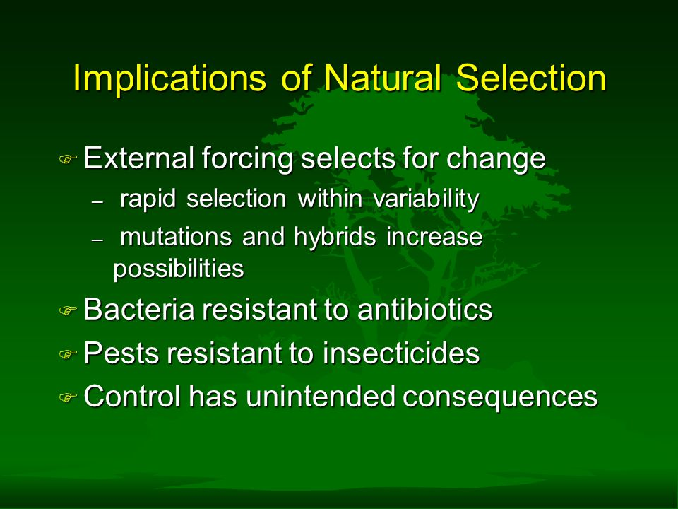 Implications of Natural Selection F External forcing selects for change – rapid selection within variability – mutations and hybrids increase possibilities F Bacteria resistant to antibiotics F Pests resistant to insecticides F Control has unintended consequences