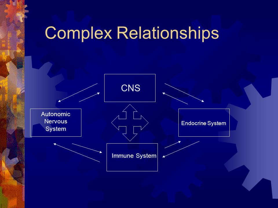 Complex Relationships CNS Autonomic Nervous System Immune System Endocrine System