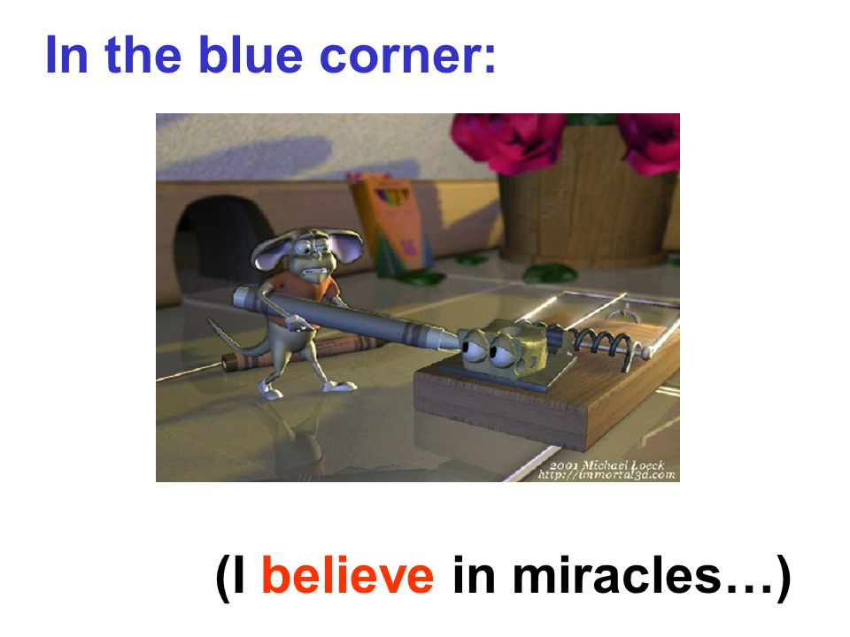 In the blue corner: (I believe in miracles…)