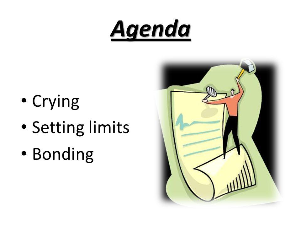 Agenda Crying Setting limits Bonding