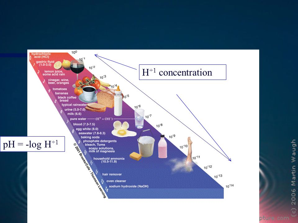 H +1 concentration pH = -log H +1