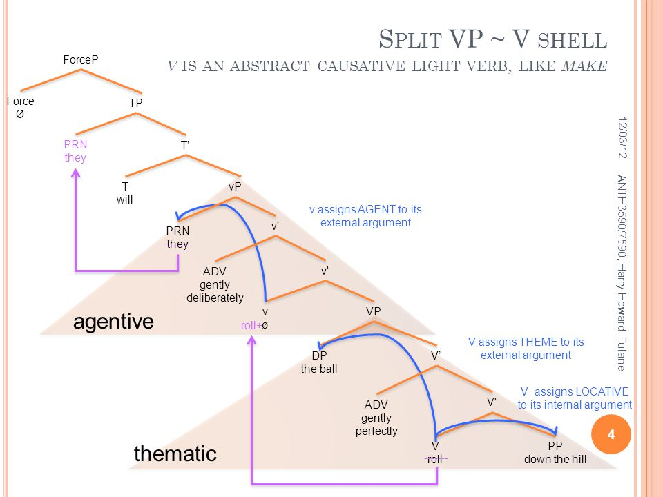 agentive thematic DP the ball PP down the hill S PLIT VP ~ V SHELL V IS AN ABSTRACT CAUSATIVE LIGHT VERB, LIKE MAKE 12/03/12 4 ANTH3590/7590, Harry Howard, Tulane VP v vøvø V V roll roll+ ------- T'T' T will TP PRN they ------- ForceP Force Ø V assigns LOCATIVE to its internal argument v assigns AGENT to its external argument V assigns THEME to its external argument V'V' ADV gently perfectly vP PRN they v ADV gently deliberately