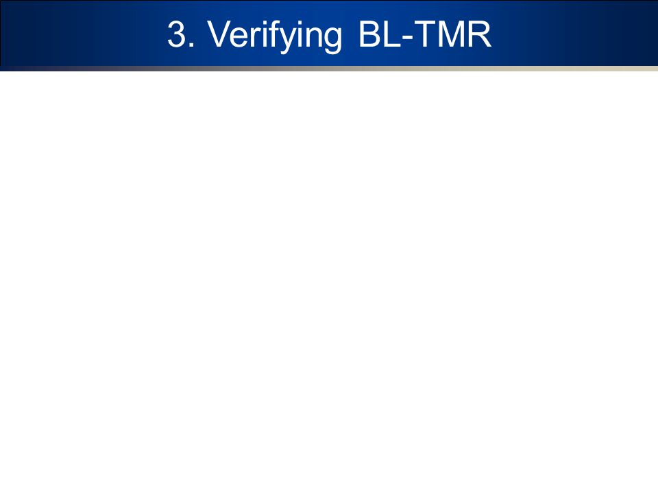 3. Verifying BL-TMR
