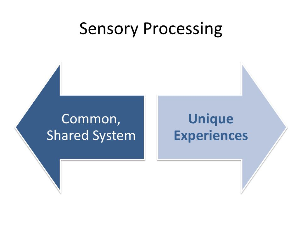 Sensory Processing Common, Shared System Unique Experiences