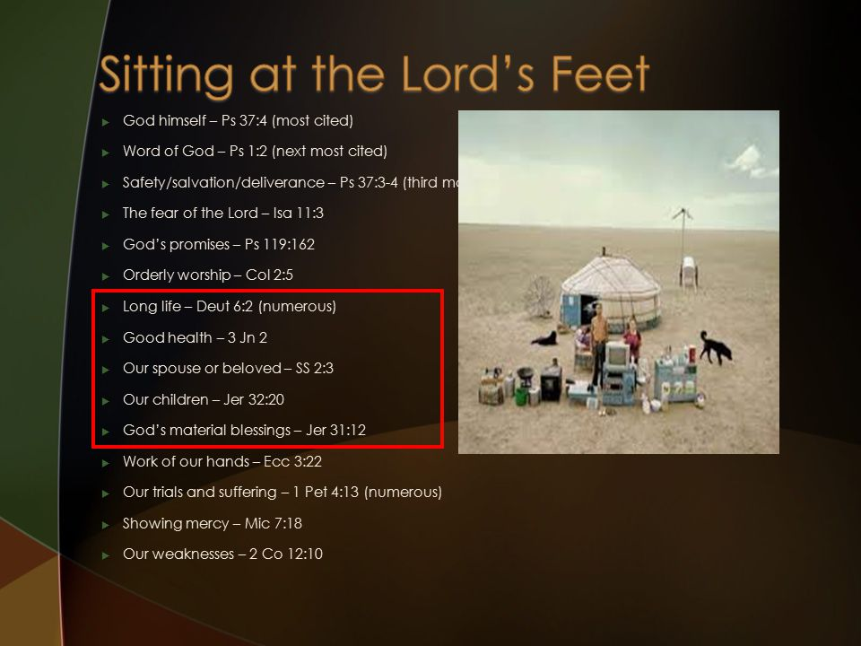  God himself – Ps 37:4 (most cited)  Word of God – Ps 1:2 (next most cited)  Safety/salvation/deliverance – Ps 37:3-4 (third most cited)  The fear of the Lord – Isa 11:3  God's promises – Ps 119:162  Orderly worship – Col 2:5  Long life – Deut 6:2 (numerous)  Good health – 3 Jn 2  Our spouse or beloved – SS 2:3  Our children – Jer 32:20  God's material blessings – Jer 31:12  Work of our hands – Ecc 3:22  Our trials and suffering – 1 Pet 4:13 (numerous)  Showing mercy – Mic 7:18  Our weaknesses – 2 Co 12:10