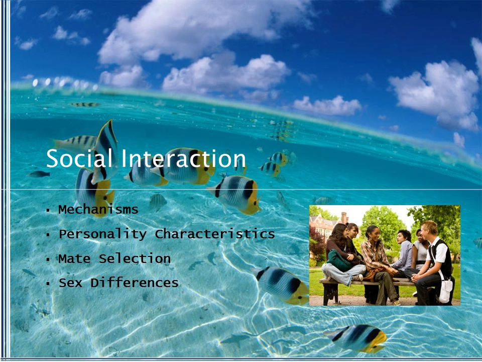 Social Interaction  Mechanisms  Personality Characteristics  Mate Selection  Sex Differences