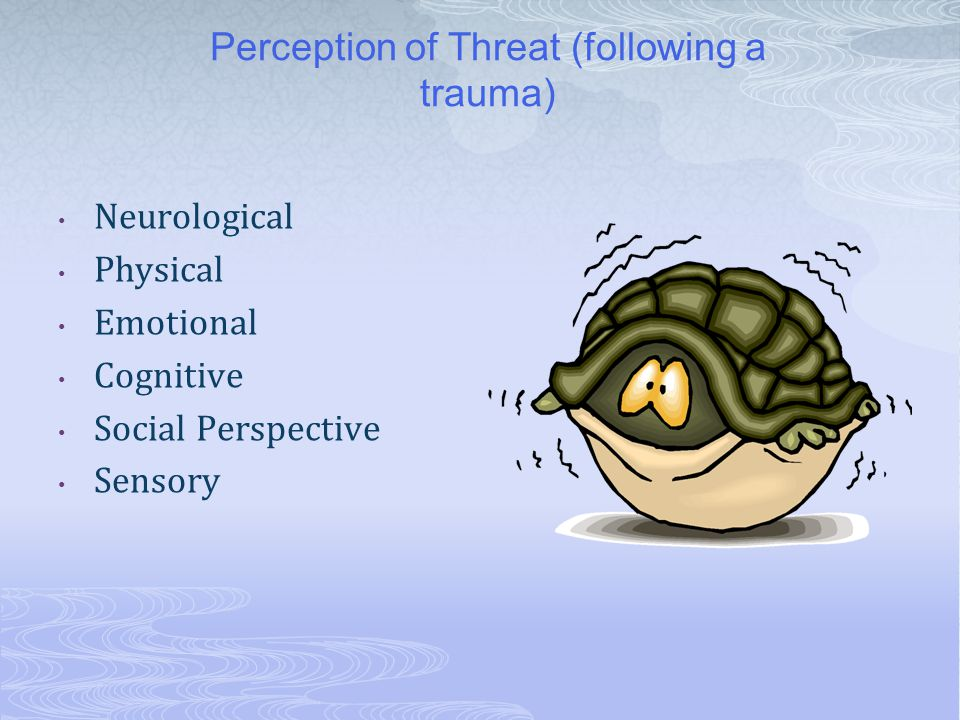 Perception of Threat (following a trauma) Neurological Physical Emotional Cognitive Social Perspective Sensory