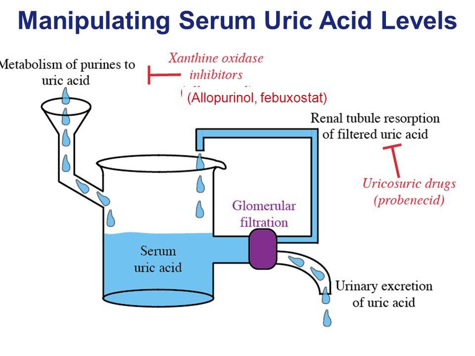 Manipulating Serum Uric Acid Levels (Allopurinol, febuxostat)