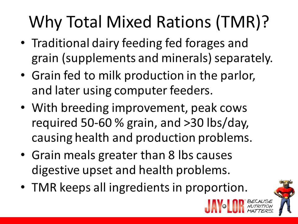Why Total Mixed Rations (TMR)? Traditional dairy feeding fed forages and grain (supplements and minerals) separately. Grain fed to milk production in