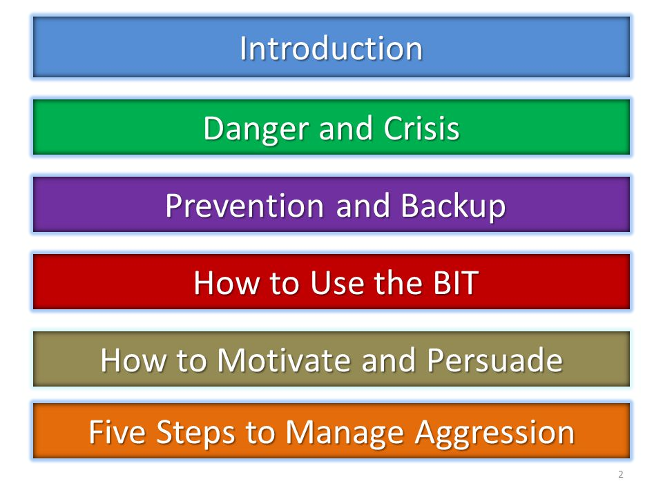 Introduction 2 Danger and Crisis Prevention and Backup Prevention and Backup How to Use the BIT How to Use the BIT Five Steps to Manage Aggression How to Motivate and Persuade