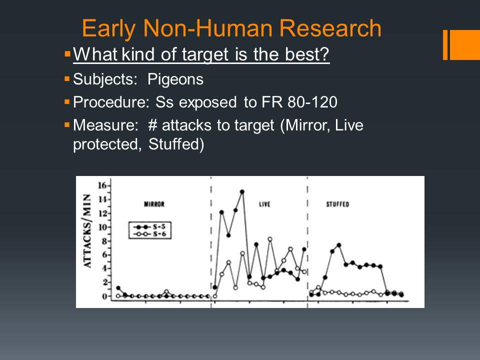 Early Non-Human Research  What kind of target is the best.
