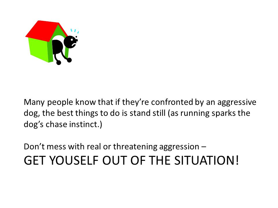 Many people know that if they're confronted by an aggressive dog, the best things to do is stand still (as running sparks the dog's chase instinct.) Don't mess with real or threatening aggression – GET YOUSELF OUT OF THE SITUATION!