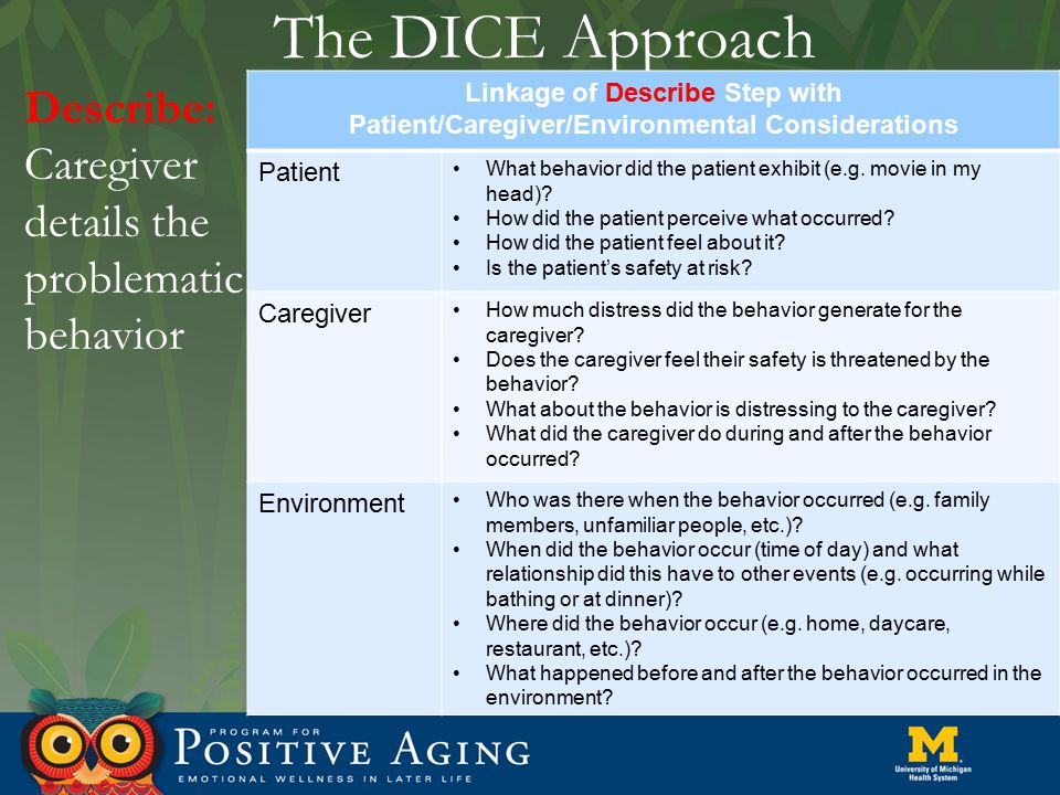 The DICE Approach Describe: Caregiver details the problematic behavior Linkage of Describe Step with Patient/Caregiver/Environmental Considerations Pa