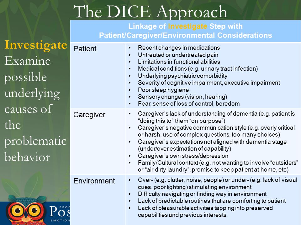 The DICE Approach Investigate Examine possible underlying causes of the problematic behavior Linkage of Investigate Step with Patient/Caregiver/Enviro