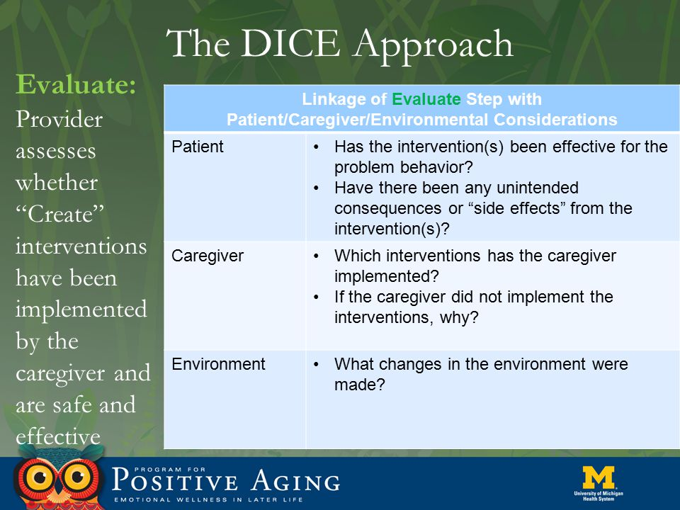 "The DICE Approach Evaluate: Provider assesses whether ""Create"" interventions have been implemented by the caregiver and are safe and effective Linkage"