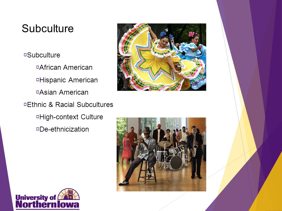 Subculture  Subculture  African American  Hispanic American  Asian American  Ethnic & Racial Subcultures  High-context Culture  De-ethnicization