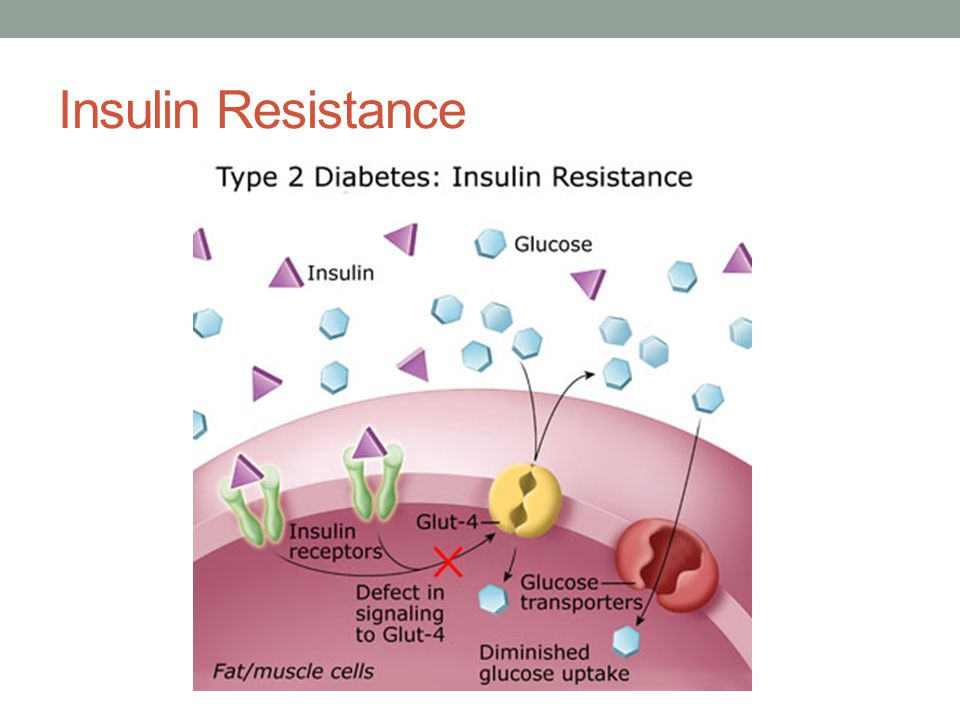 Exogenous insulin Support the clinical effects of metformin and the thiazolidinediones, and may also have important beneficial effects in reducing inflammatory processes, especially in the vasculature.