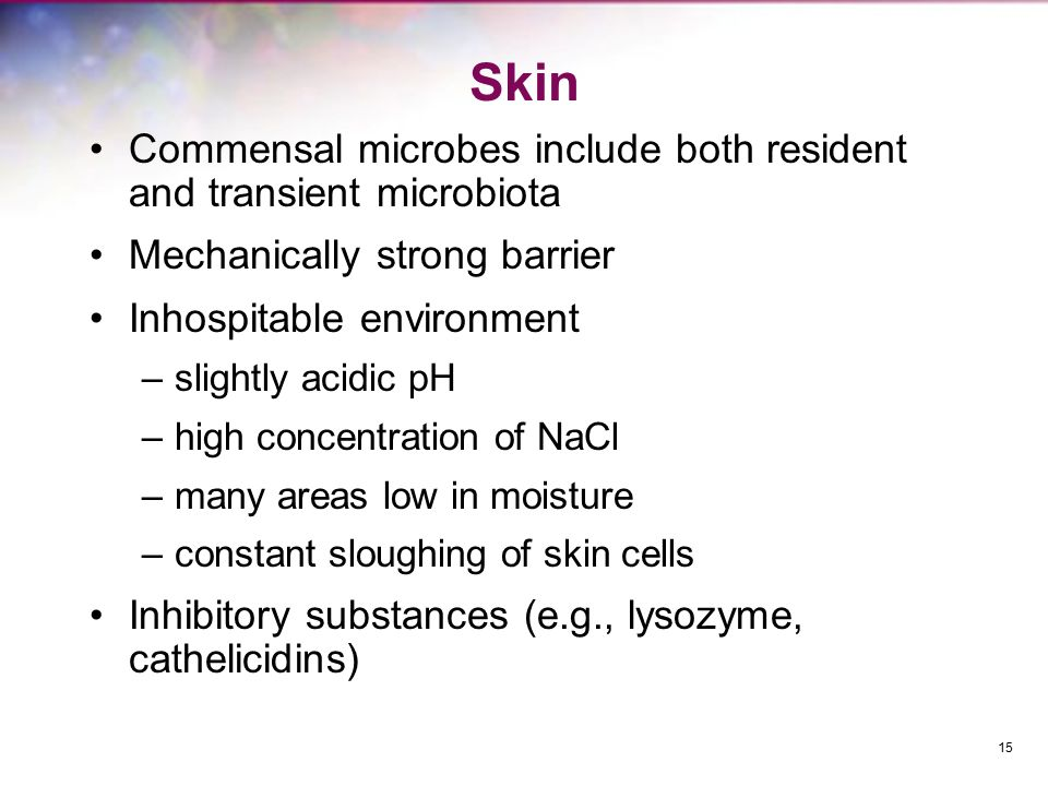 Skin Commensal microbes include both resident and transient microbiota Mechanically strong barrier Inhospitable environment –slightly acidic pH –high concentration of NaCl –many areas low in moisture –constant sloughing of skin cells Inhibitory substances (e.g., lysozyme, cathelicidins) 15